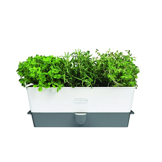 Cole & Mason Self-Watering Herb Keeper Trough
