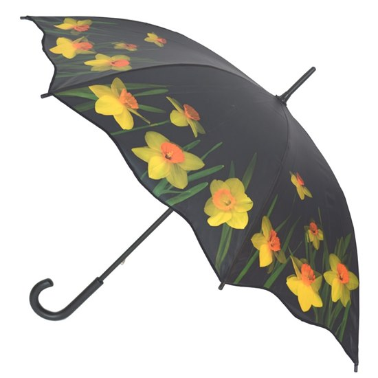 5055722200028 Artbrollies Daffodil Stick Umbrella