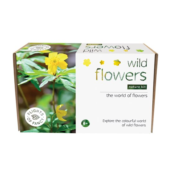 5060008858053 Flights of Fancy Wild Flowers Kit